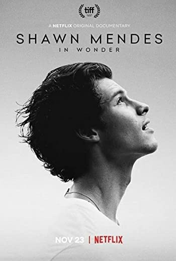 Shawn Mendes: In Wonder ชอว์น เมนเดส: ช่วงเวลามหัศจรรย์ (2020) [ บรรยายไทย ]